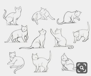 cats, disegni, and draw image