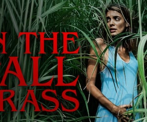 horror films, movie review, and in the tall grass image