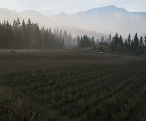 countryside, farmland, and green image