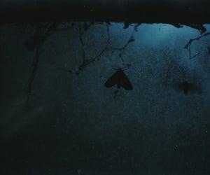 35mm, blue, and dark image