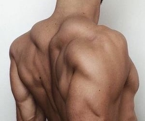 body, gym, and motivation image