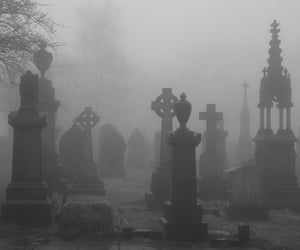 cemetery, grave, and grey image