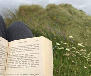 books, bookshop, and nature image