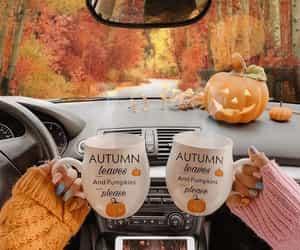 autumn, Halloween, and pumpkin image