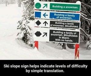 alpine, Skiing, and slopes image