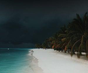 beach, ocean, and nature image