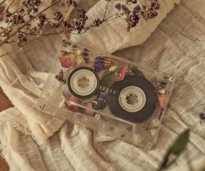 flowers, music, and aesthetic image
