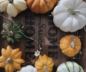 darling, gourds, and pumpkins image