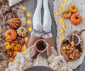 girl, autumn, and pumpkin image