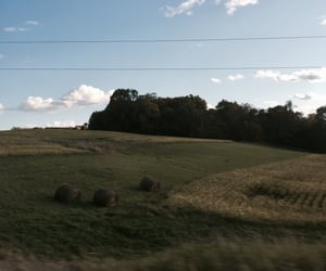 farm, farmland, and field image