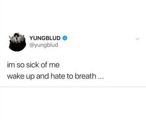 Lyrics, quote, and tweet image