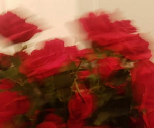 dreams, grunge, and roses image