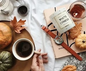 autumn, christmas, and books image