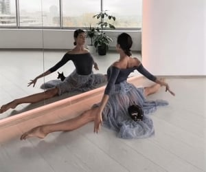 art, ballet, and body image