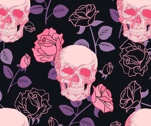 background, roses, and skull image