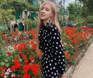 lisa, rose, and jisoo image