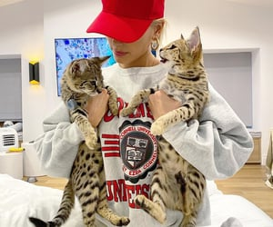 kitty, sushi, and justin bieber image