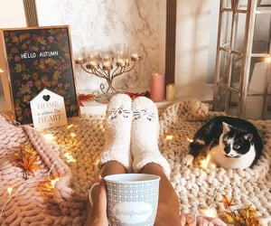 autumn, coffe, and fall image