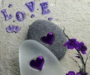 flowers, purple, and hearts image
