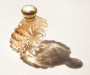 luxury, objects, and perfume image