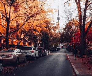 adventure, autumn, and canada image