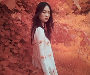 asian, autumn, and fall image