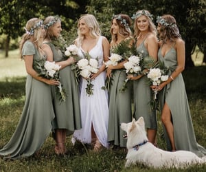 bridesmaids, color scheme, and dog image