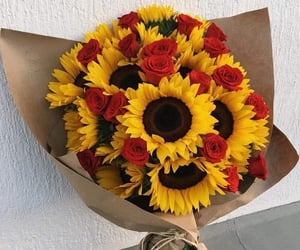 rose and sunflower image