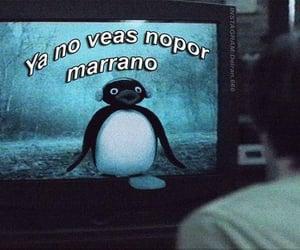 meme, reactions, and pinguimeme image