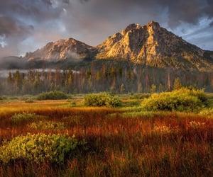 landscape, nature, and places image