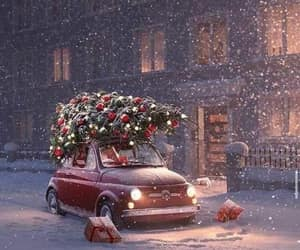 christmas lights, christmas tree, and cold image