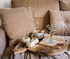 autumn, beige, and books image