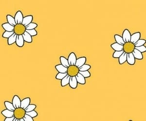 yellow and wallpaper image