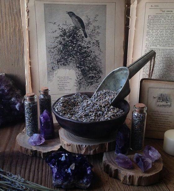 article, chamomile, and lemongrass image