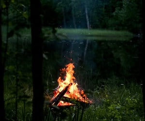 bonfire, green, and wilderness image