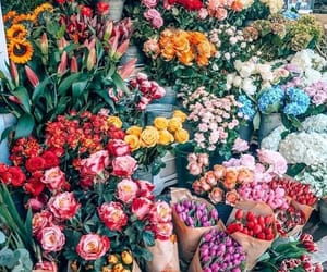 flowers, rose, and tulips image