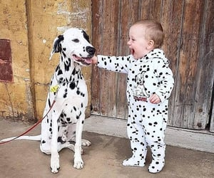 adorable, playful, and sweet image