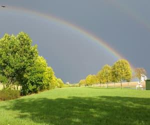 autumn, beautiful, and sunshine image