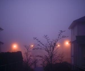 fog and purple image
