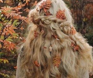 autumn, fall, and hair image
