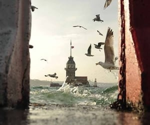 istanbul, sea, and turkey image