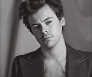 Harry Styles, hs2, and spotify image