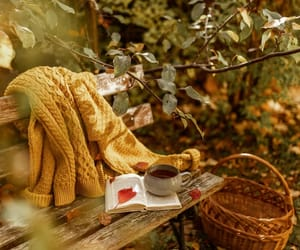 aesthetic, autumn, and basket image