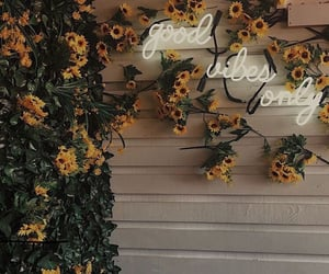 flowers, sunflower, and neon image