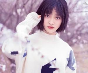 shen yue image
