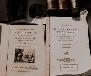 academia, classics, and literature image