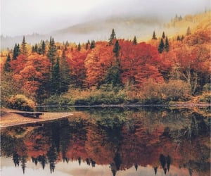 autumn, landscape, and trees image