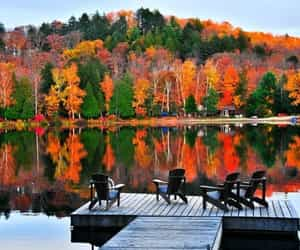 autumn, fall, and lake image