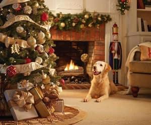 holiday, christmas, and xmas image
