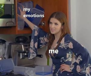 meme, emotions, and funny image